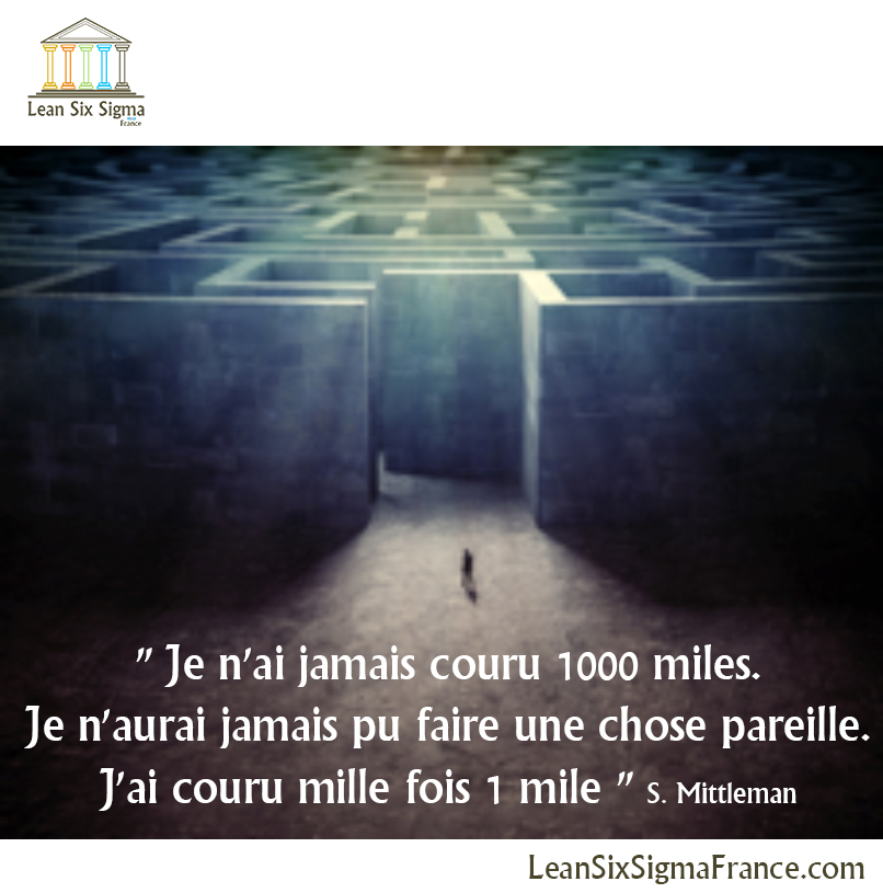 Citation de Mejora-Seguir-S.Mittleman